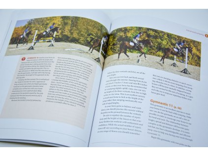 745 modern gymnastics systematic training for jumping horses jim wofford