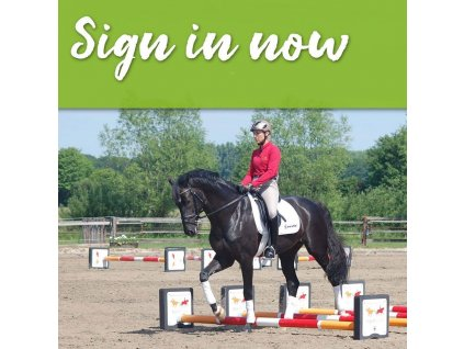 883 12 mesicni predplatne on line videoteky wehorse com