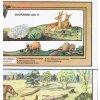 Třetihory - pohled do doby, kdy vznikalo hnědé uhlí (před 15-20i milony let)