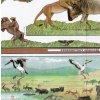Národní park Serengeti