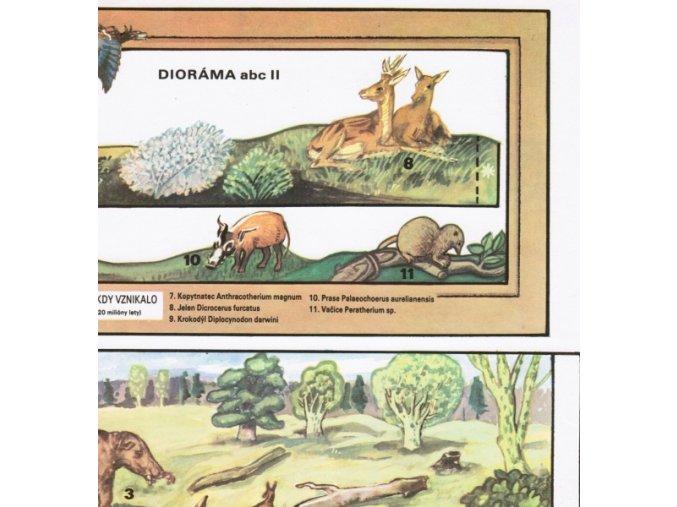 Třetihory - pohled do doby, kdy vznikalo hnědé uhlí (před 15-20 milony let)