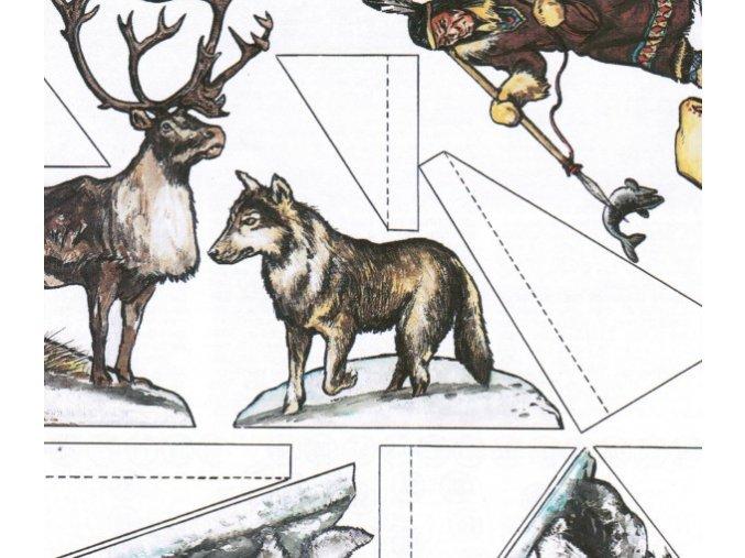 Fauna severu