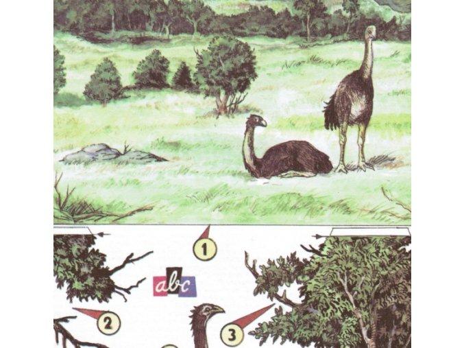 Ptačí obři