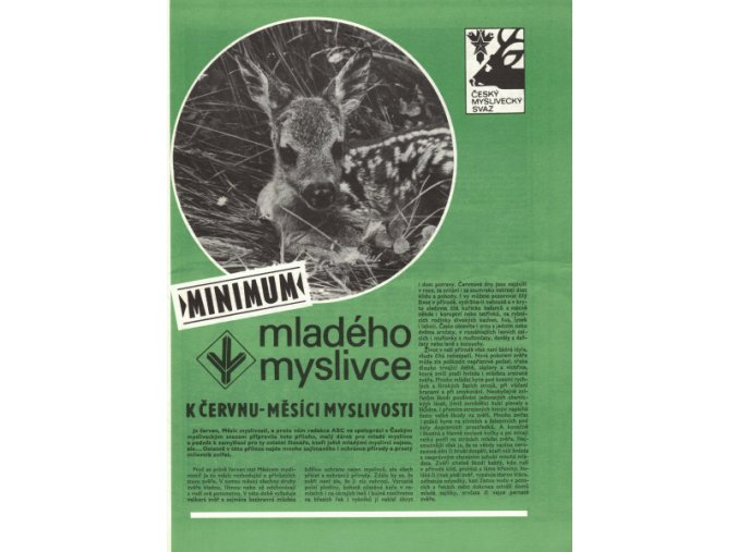 Minimum mladého myslivce