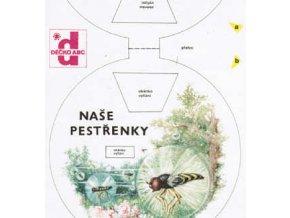 Naše pestřenky - Hmyzí helikoptéry