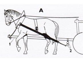 koňské spřežení, vozka a pes