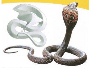 Kobra indická - Naja naja