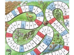 Kalendář sběru léčivých rostlin