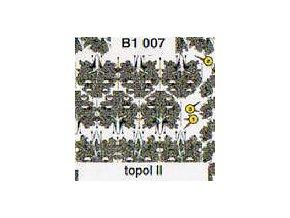 Topol II