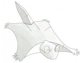 létající veverka