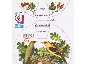 Pěvci - ptáci