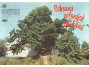 Ochrana zelených velikánů