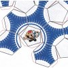 míč Euro 2000