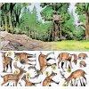 Živé klenoty lesa
