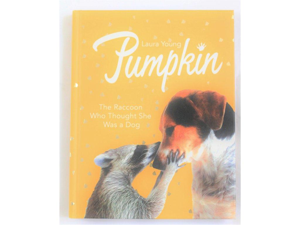 Kniha Pumpkin - English - Bazar