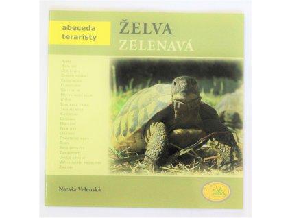 Kniha Želva zelenavá - Bazar