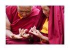 Buddhovy dcery