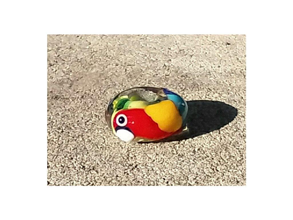 Skleněná perla papoušek
