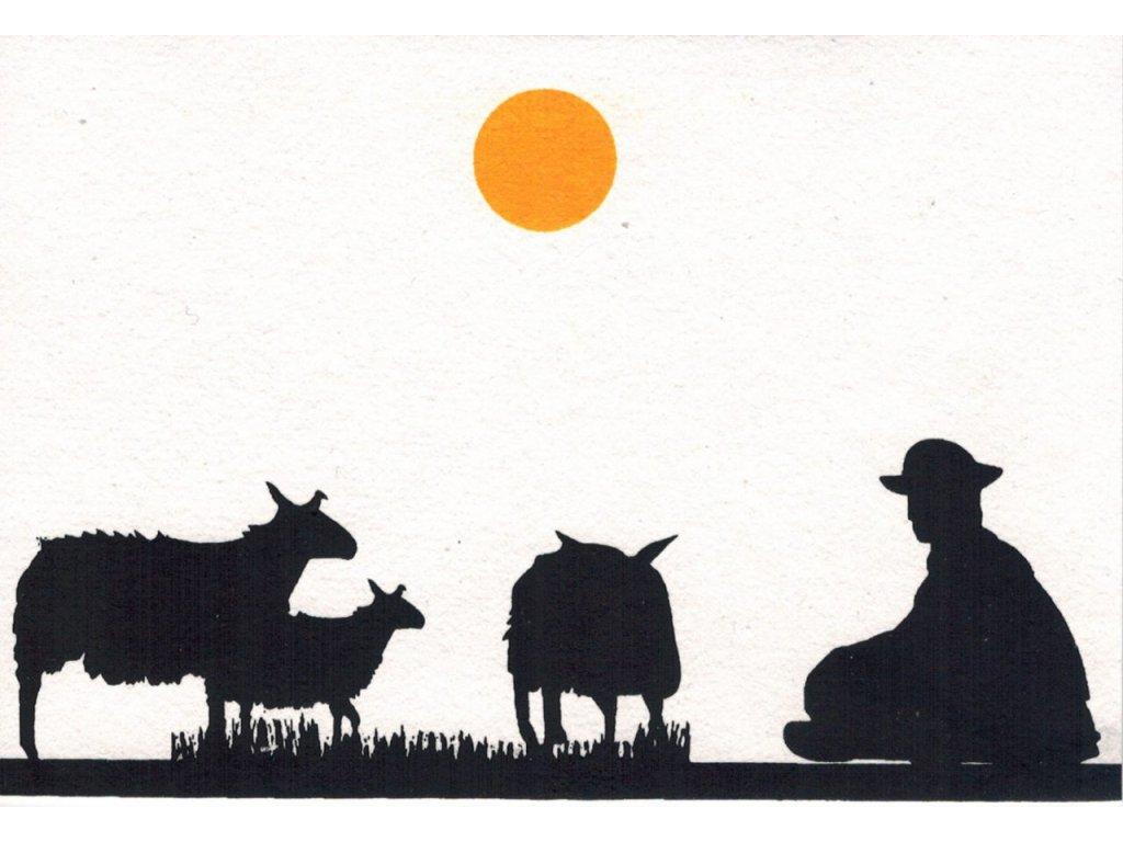 Přání s nomády - muž pasoucí kozy