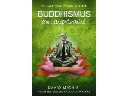 david michie buddhismus pro zaneprazdnene