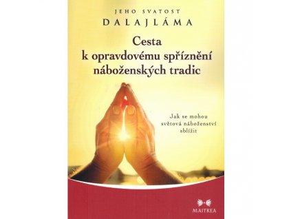 Cesta k opravdovému spříznění náboženských tradic - JS dalajlama