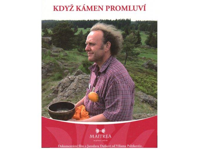 DVD Poltikovič - Když kámen promluví