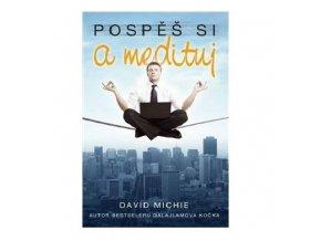 Pospěš si a medituj - David Michie