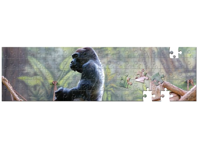 panorama 320×1100 100