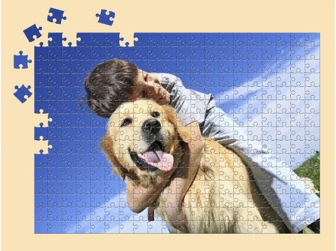 A3 300 puzzle