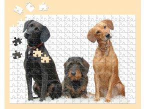 A3 240 puzzle