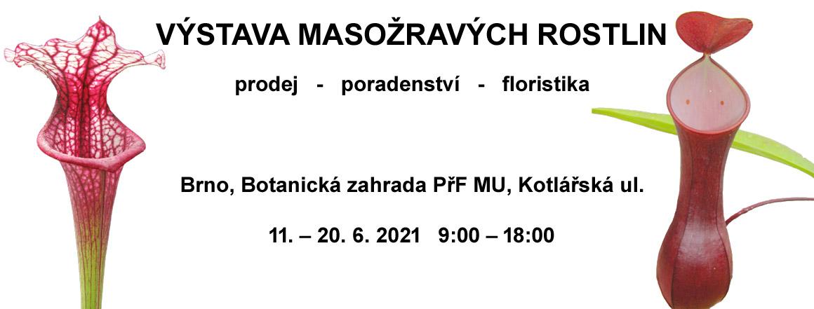 výstava masožravek Brno 2021