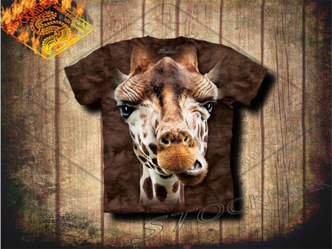 15 3619 kids t shirt