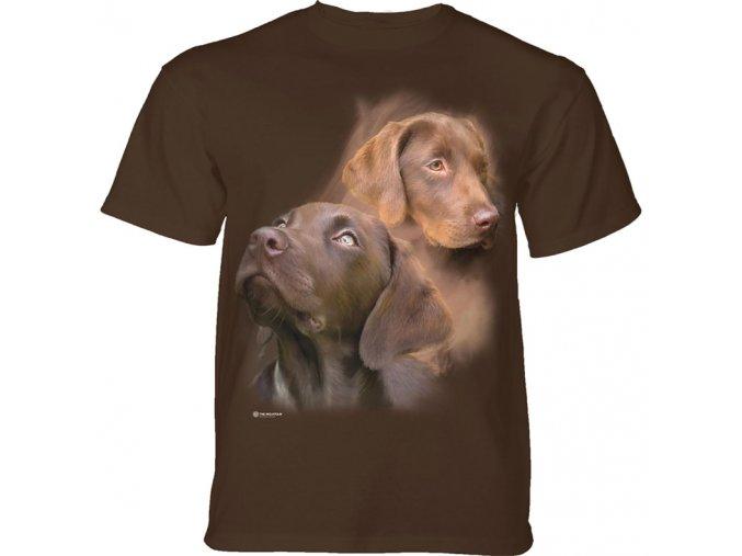 Pentagram Dragons 10-4940