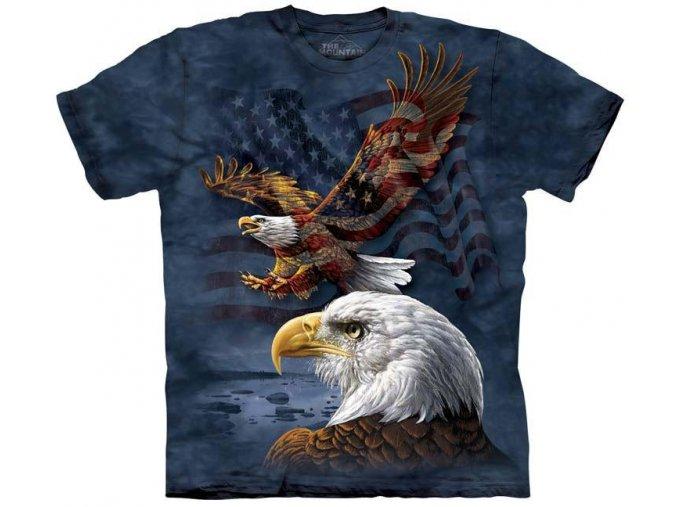 Eagle Flag 10 8207