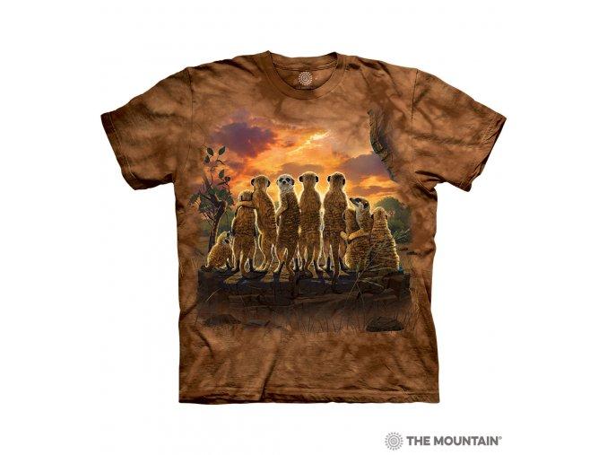 Patriotic White Wolf 10 5967