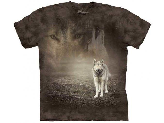 Grey Wolf Portrait 10 5892