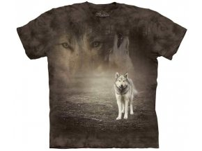 Grey Wolf Portrait 10 5892