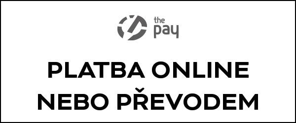 Platba online platebními kartami nebo převodem