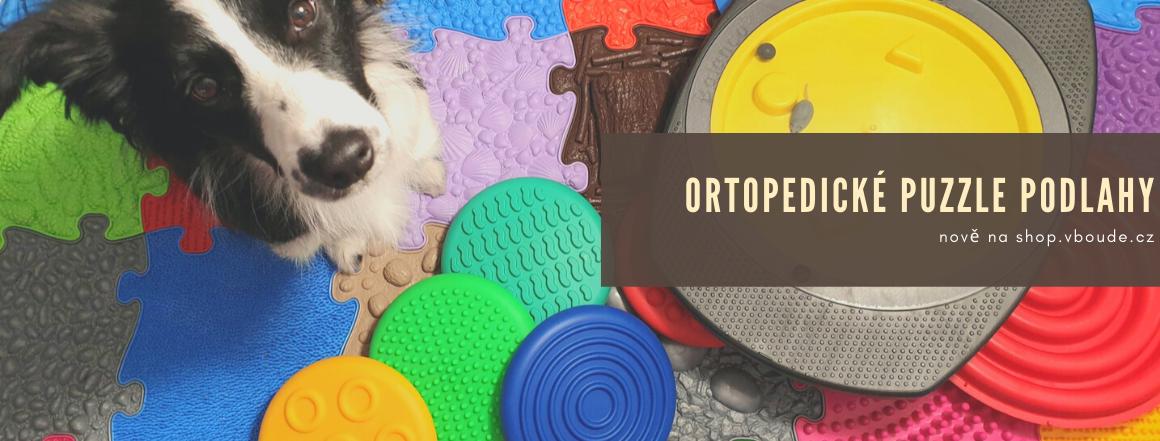 ortopodlahy