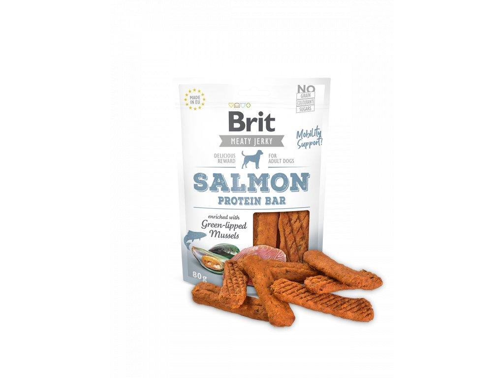Salmon Protein Bar