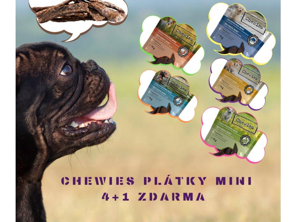 CHEWIES PLÁTKY MINI