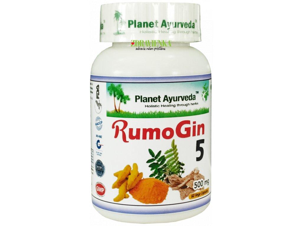 Rumo Gin 5 kapsule 500mg Planet Ayurveda