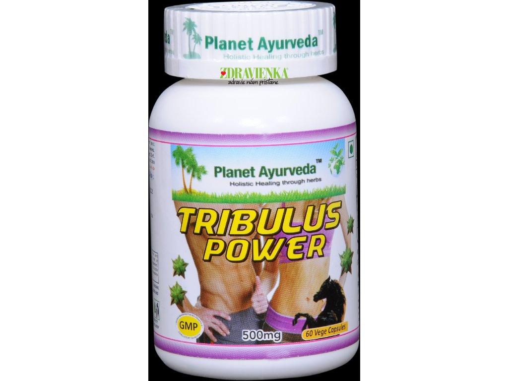 Tribulus Power kapsuly 500mg - Planet Ayurveda