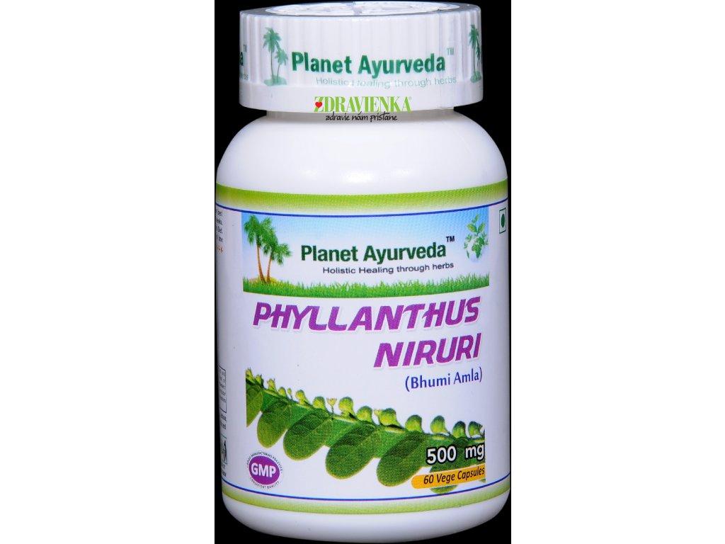 phyllanthus niruri - chanca piedra kapsul 500mg Planet Ayurveda
