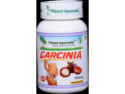 Garcinia kapsuly 500mg - Planet Ayurveda