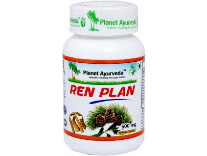 Ren Plan kapsuly 500mg - Planet Ayurveda