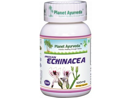 Indian Echinacea kapsuly 500mg - Planet Ayurveda