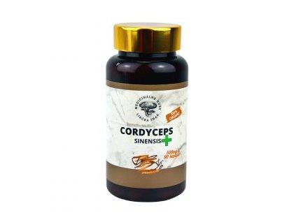 Cordyceps sinensis plus - zvysenie libida, energia - Medicinálne huby - 90 kapsúl