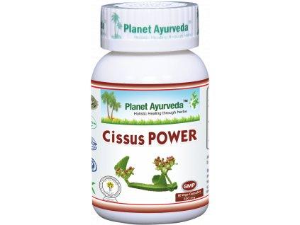 Cissus POWER kapsuly 500mg - Planet Ayurveda