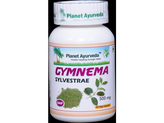 gymnema sylvestre capsules